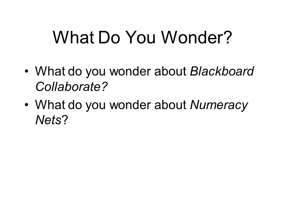 What Do You Wonder? What do you wonder about Blackboard Collaborate? What do you wonder about Numeracy Nets?