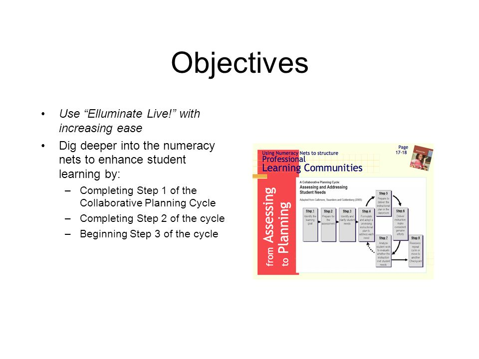 Objectives Use Elluminate Live! with increasing ease Dig deeper into the numeracy nets to enhance student learning by: –Completing Step 1 of the Colla