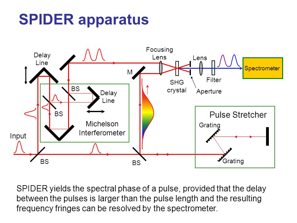 How SPIDER works t Chirped pulse t t This pulse sums with the blue part of the chirped pulse. This pulse sums with the green part of the chirped pulse