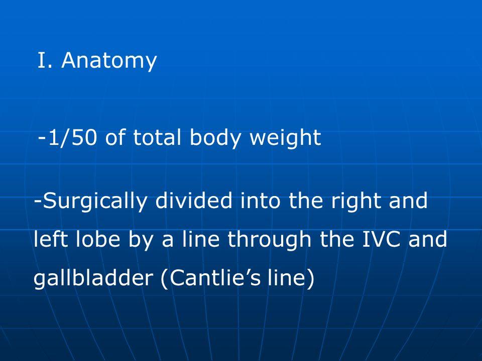V.Pathology A.Trauma- 2 nd most commonly injured organ 1.