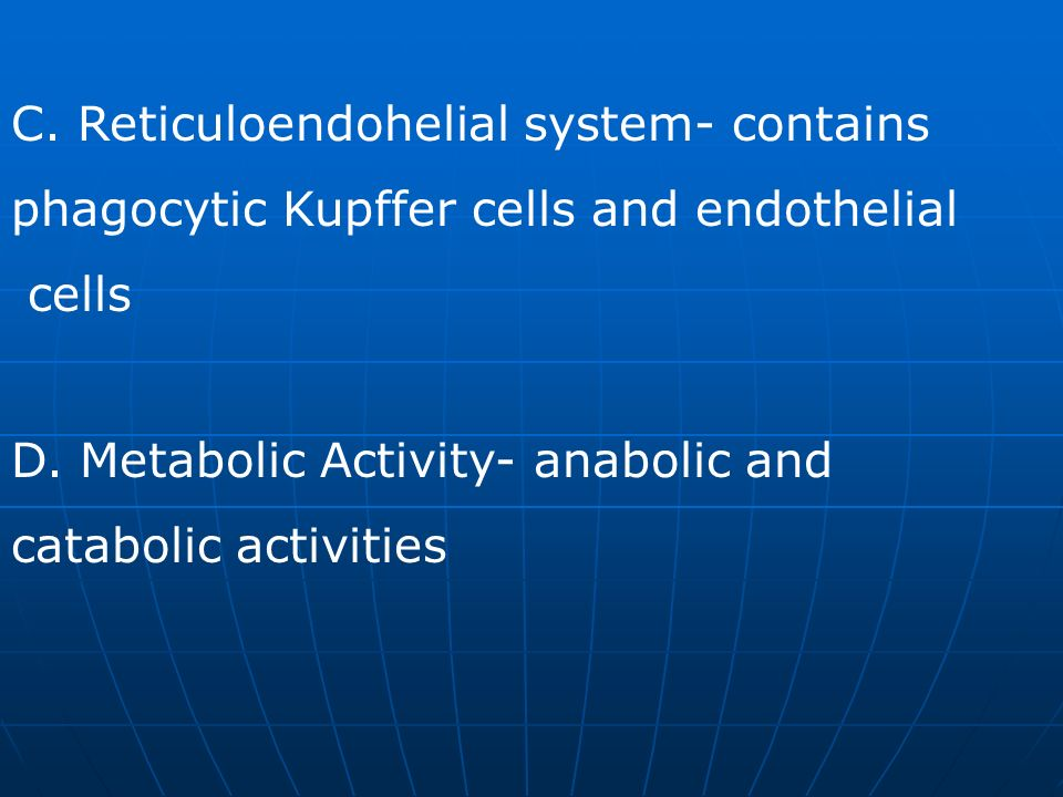 C. Reticuloendohelial system- contains phagocytic Kupffer cells and endothelial cells D. Metabolic Activity- anabolic and catabolic activities