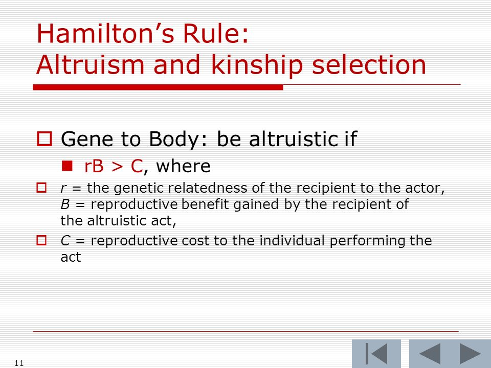 Hamiltons Rule: Altruism and kinship selection Gene to Body: be altruistic if rB > C, where r = the genetic relatedness of the recipient to the actor, B = reproductive benefit gained by the recipient of the altruistic act, C = reproductive cost to the individual performing the act 11