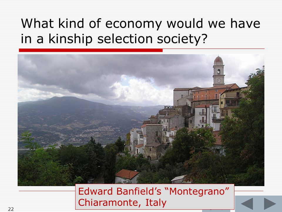 What kind of economy would we have in a kinship selection society.