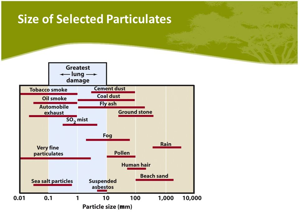 Size of Selected Particulates