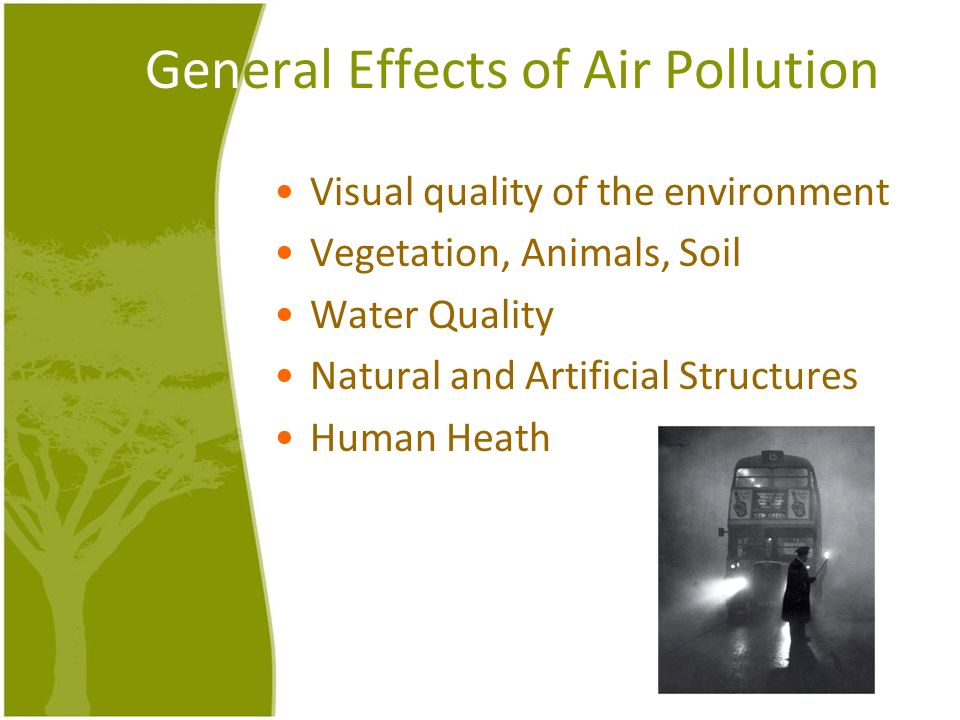 General Effects of Air Pollution Visual quality of the environment Vegetation, Animals, Soil Water Quality Natural and Artificial Structures Human Hea
