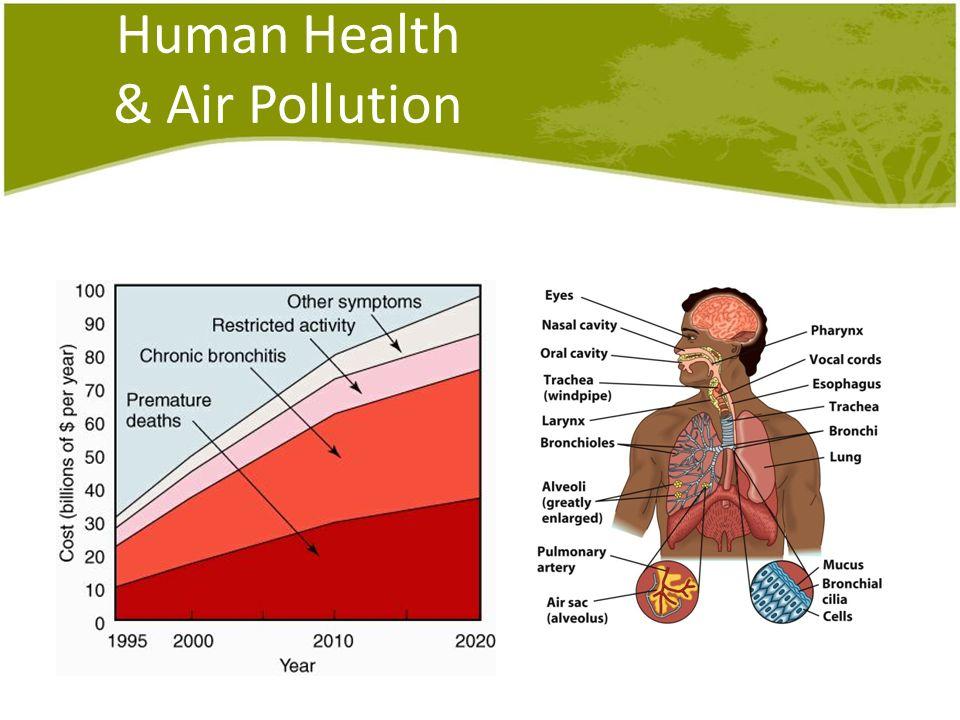 Human Health & Air Pollution