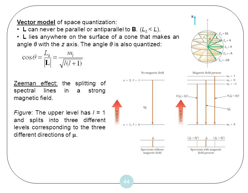 44 Vector model of space quantization: L can never be parallel or antiparallel to B. (L z < L). L lies anywhere on the surface of a cone that makes an