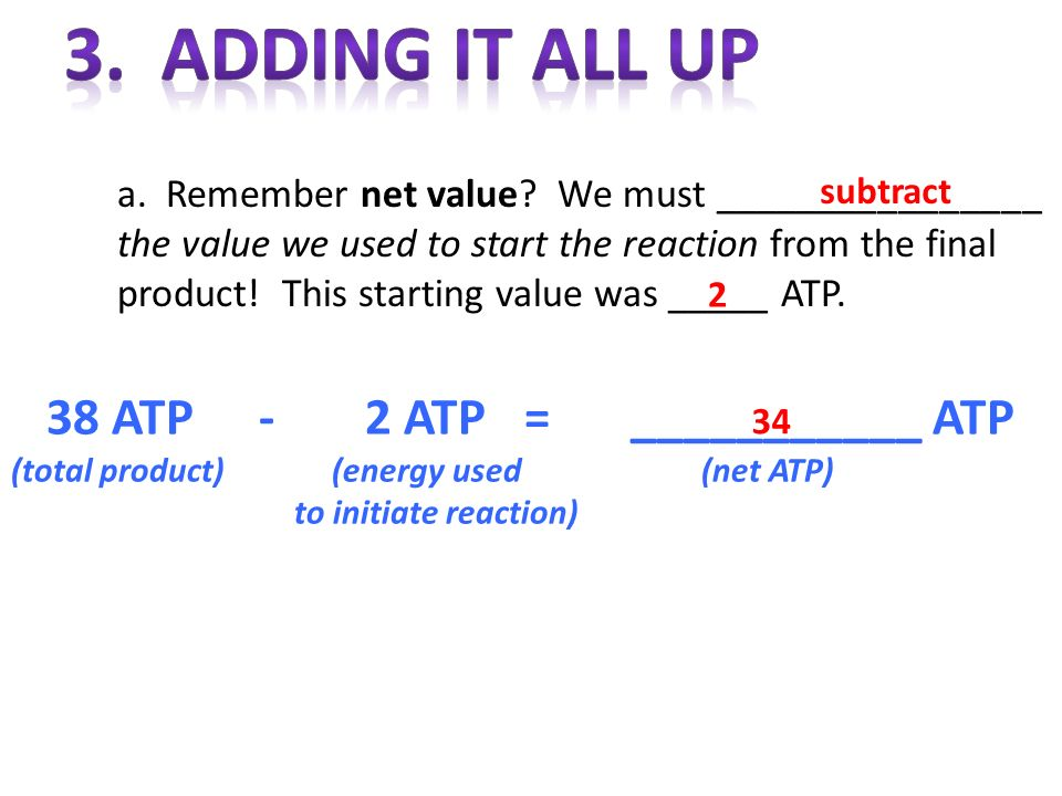 a. Remember net value? We must ________________ the value we used to start the reaction from the final product! This starting value was _____ ATP. 38