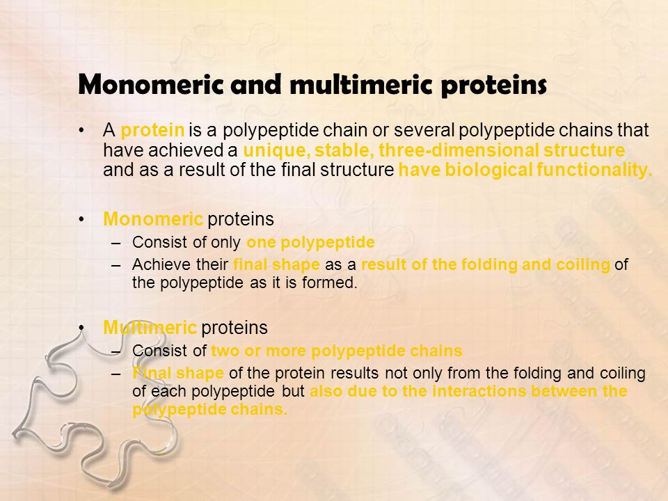Monomeric and multimeric proteins A protein is a polypeptide chain or several polypeptide chains that have achieved a unique, stable, three-dimensiona