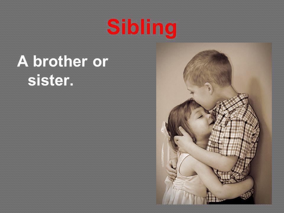 Sibling A brother or sister.