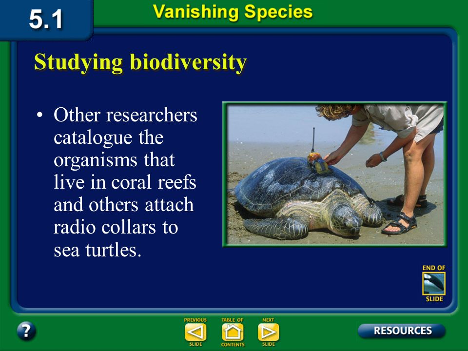 Section 5.1 Summary – pages 111-120 How do ecologists perform experiments related to biodiversity? Today you can read about projects in rain forests t