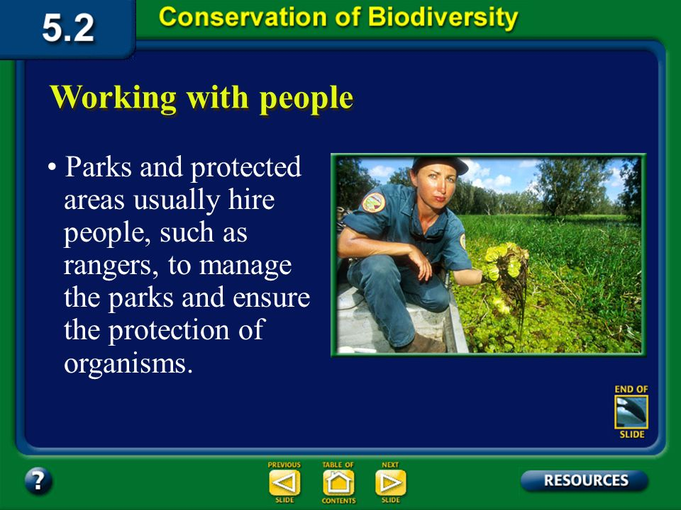 Section 5.2 Summary – pages 121-125 Habitat corridors Habitat corridors are protected strips of land that allow the migration of organisms from one wi