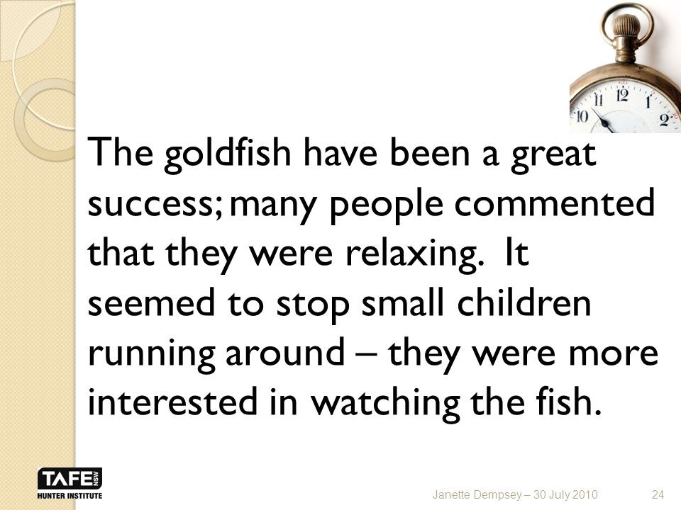 The goldfish have been a great success; many people commented that they were relaxing.