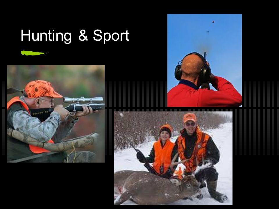 Hunting & Sport