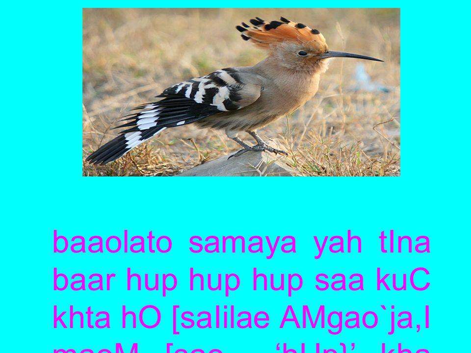 [sa caaoMca sao yah AasanaI sao ja,maIna pr iCpo kID,o makaoD,ao M kao KatI hO.