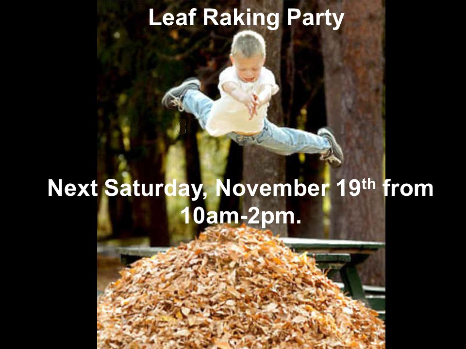Leaf R Leaf Raking Party Next Saturday, November 19 th from 10am-2pm.