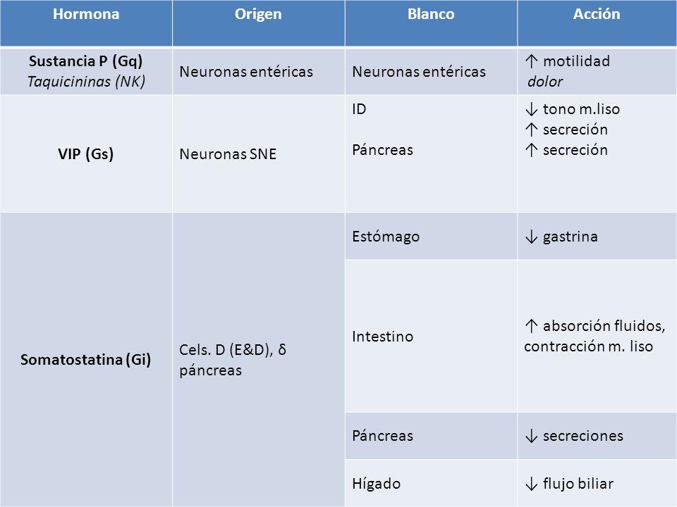 HormonaOrigenBlancoAcción Sustancia P (Gq) Taquicininas (NK) Neuronas entéricas motilidad dolor VIP (Gs)Neuronas SNE ID Páncreas tono m.liso secreción