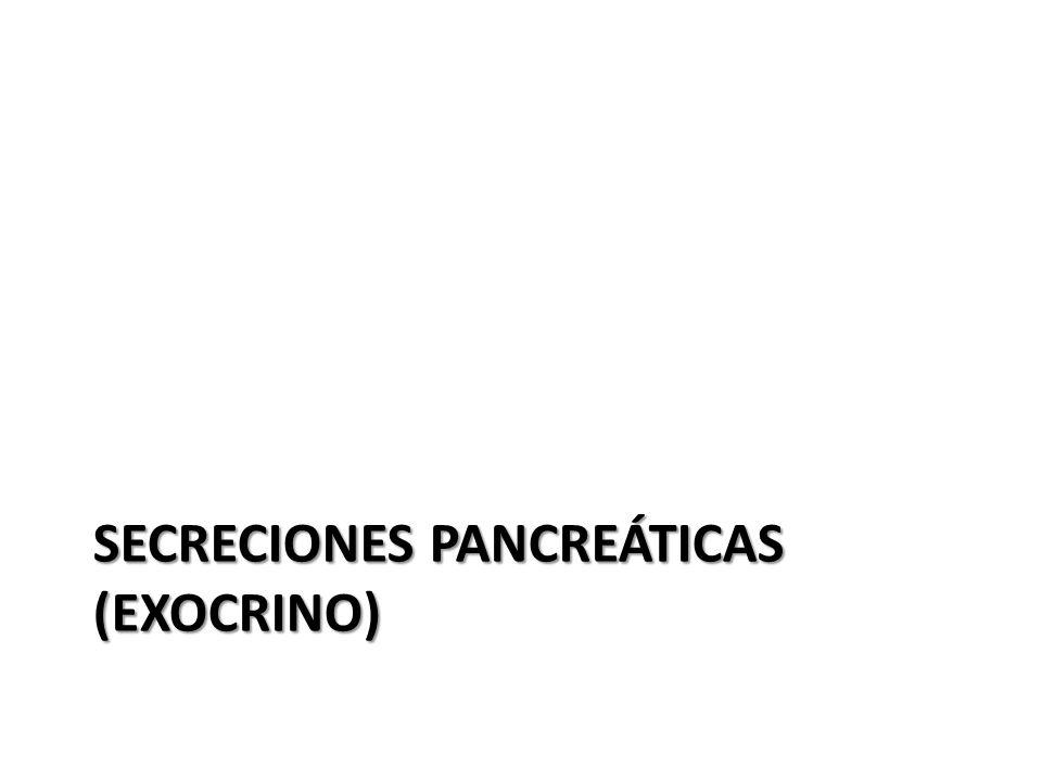 SECRECIONES PANCREÁTICAS (EXOCRINO)