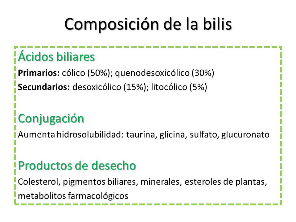 Composición de la bilis Ácidos biliares Primarios: cólico (50%); quenodesoxicólico (30%) Secundarios: desoxicólico (15%); litocólico (5%) Conjugación