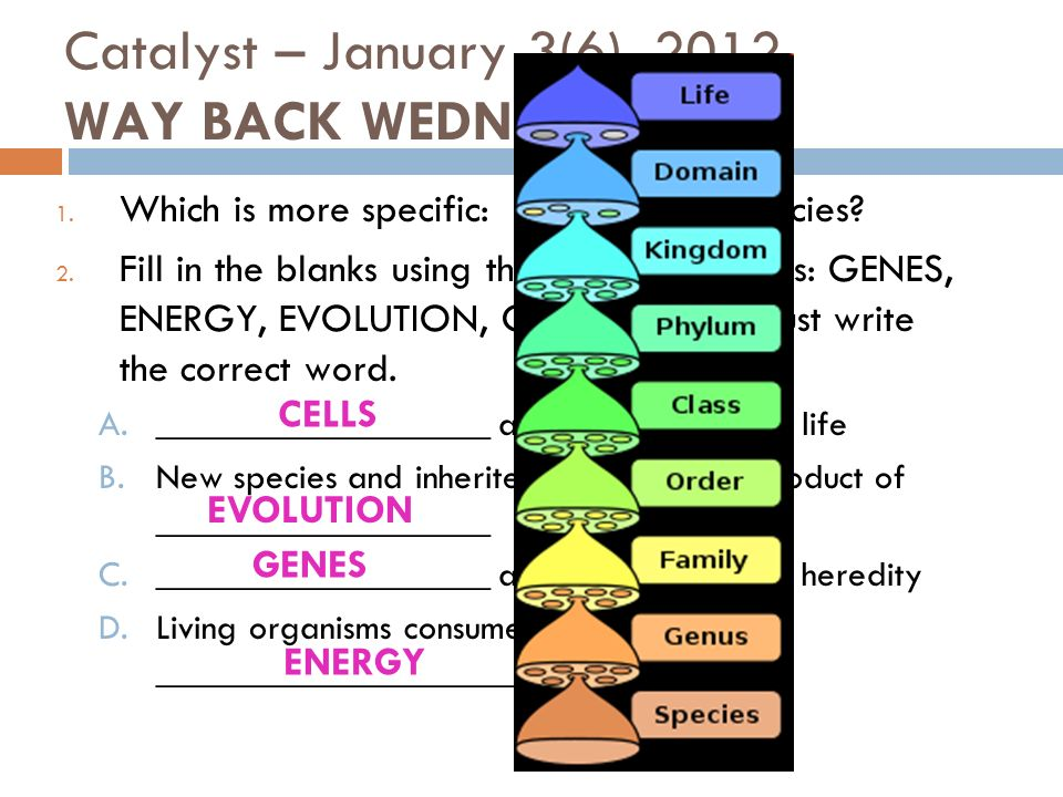 Catalyst – January 3(6), 2012 WAY BACK WEDNESDAY!!.