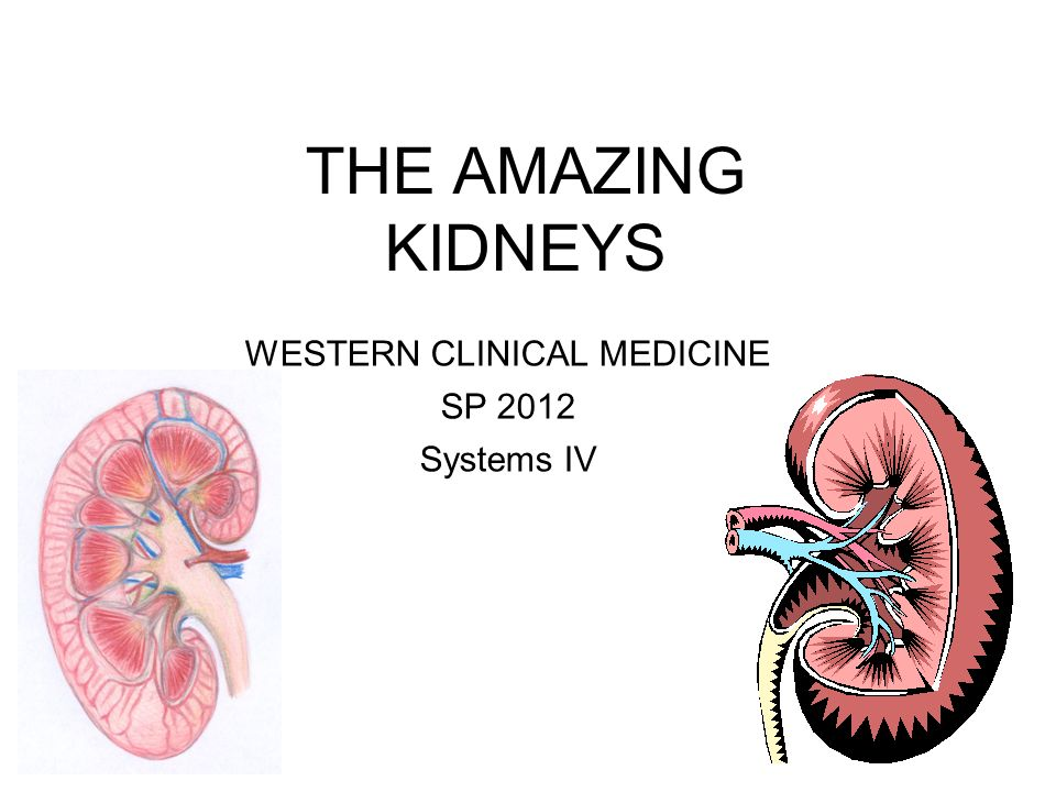 THE AMAZING KIDNEYS WESTERN CLINICAL MEDICINE SP 2012 Systems IV