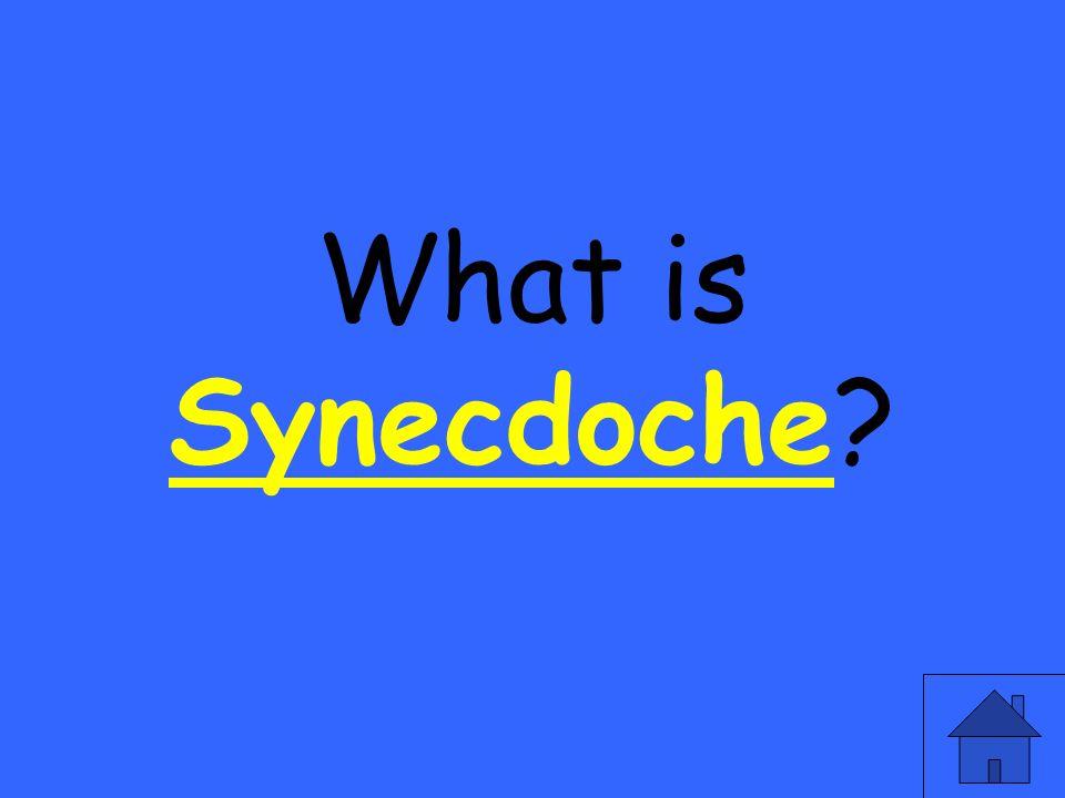 What is Synecdoche? Synecdoche