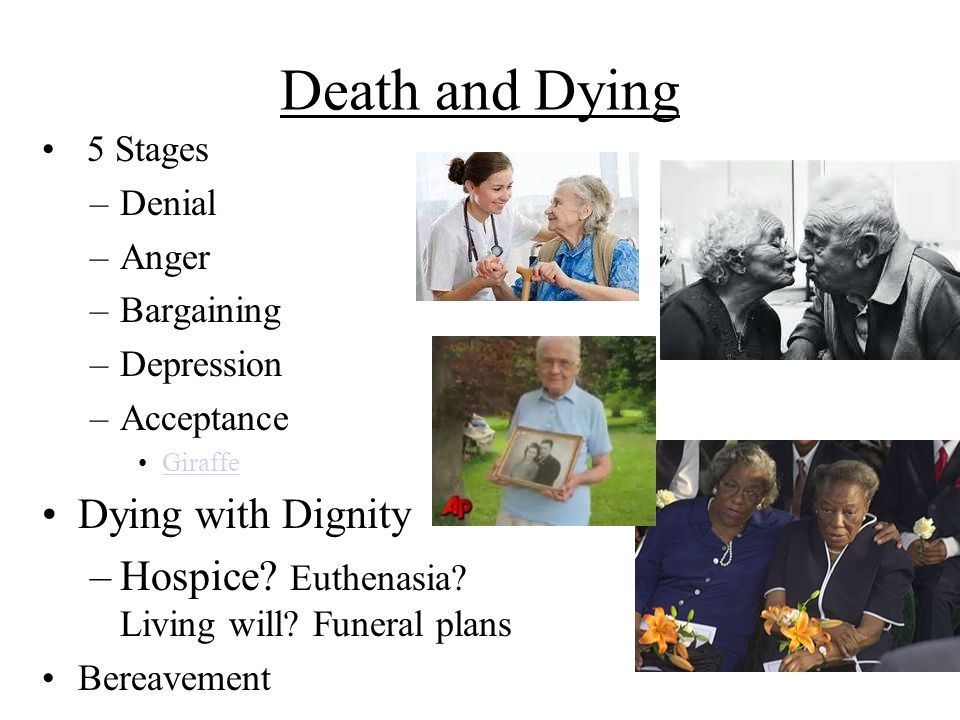 Death and Dying 5 Stages –Denial –Anger –Bargaining –Depression –Acceptance Giraffe Dying with Dignity –Hospice? Euthenasia? Living will? Funeral plan