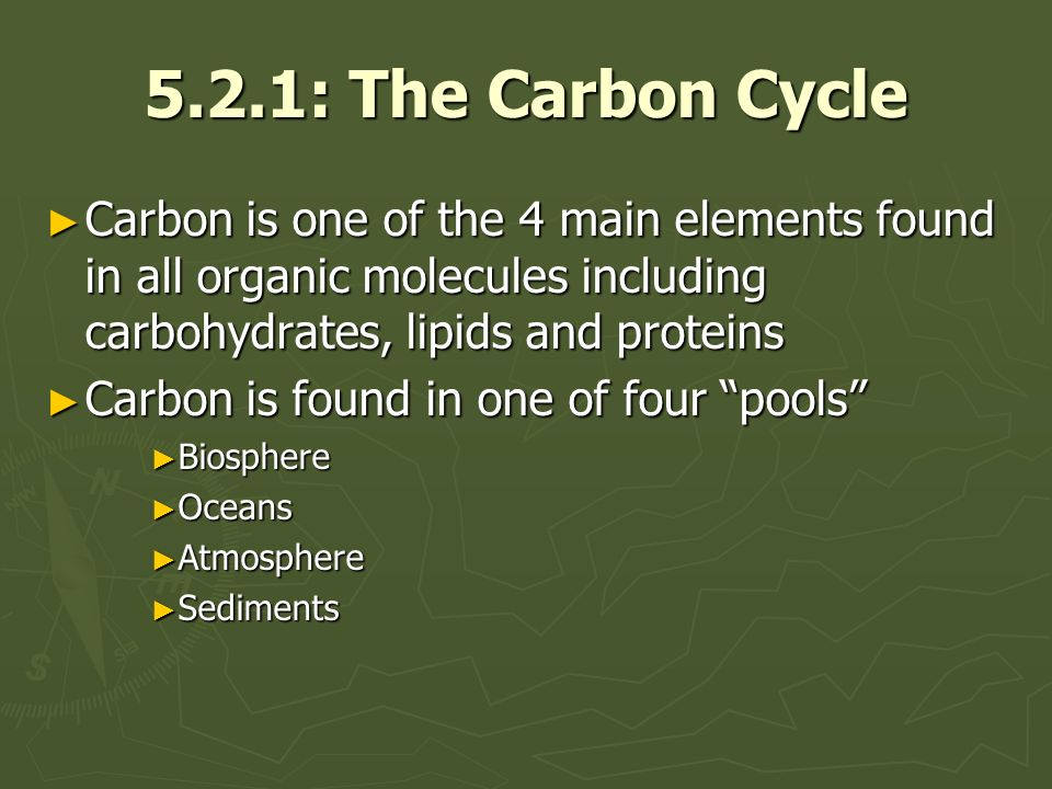 5.2.1: The Carbon Cycle Carbon is one of the 4 main elements found in all organic molecules including carbohydrates, lipids and proteins Carbon is one