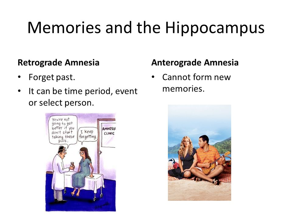 Memories and the Hippocampus Retrograde Amnesia Forget past. It can be time period, event or select person. Anterograde Amnesia Cannot form new memori