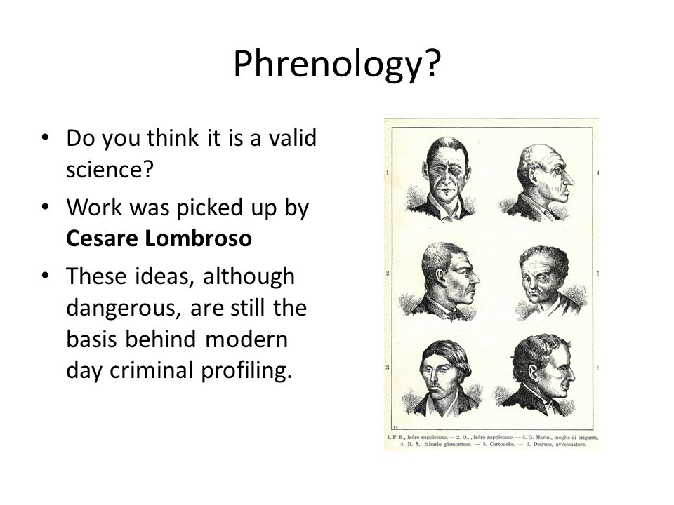 Phrenology? Do you think it is a valid science? Work was picked up by Cesare Lombroso These ideas, although dangerous, are still the basis behind mode