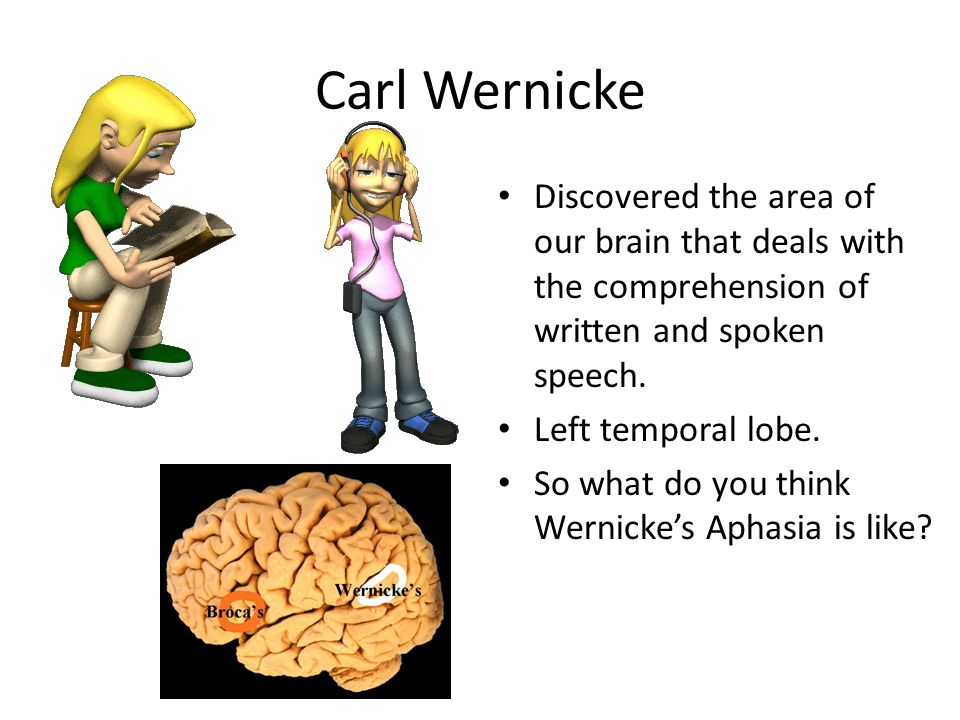 Carl Wernicke Discovered the area of our brain that deals with the comprehension of written and spoken speech. Left temporal lobe. So what do you thin