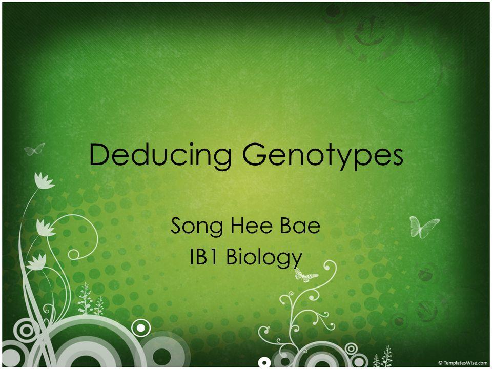 Deducing Genotypes Song Hee Bae IB1 Biology