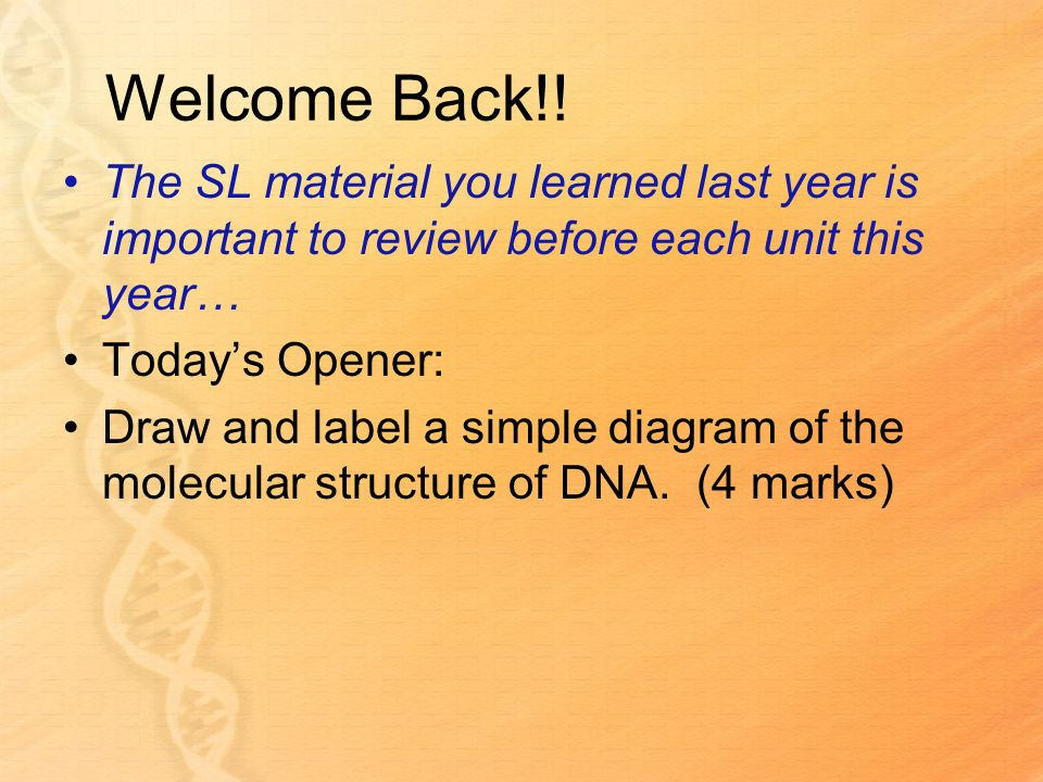 Welcome Back!! The SL material you learned last year is important to review before each unit this year… Todays Opener: Draw and label a simple diagram