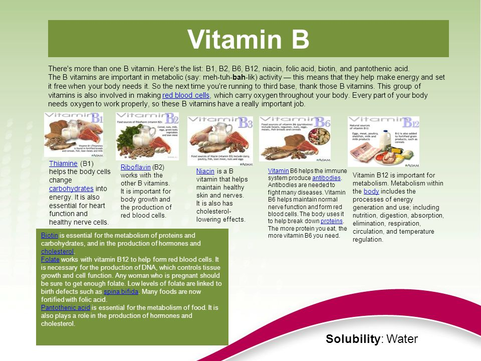 There's more than one B vitamin. Here's the list: B1, B2, B6, B12, niacin, folic acid, biotin, and pantothenic acid. The B vitamins are important in m