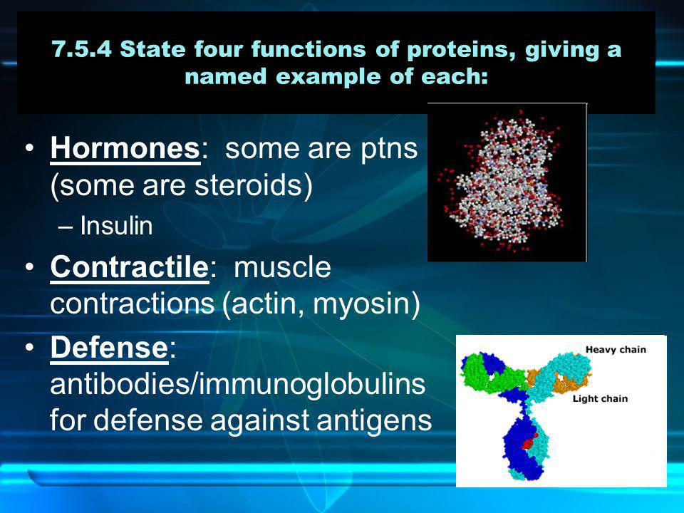 7.5.4 State four functions of proteins, giving a named example of each: Hormones: some are ptns (some are steroids) –Insulin Contractile: muscle contr
