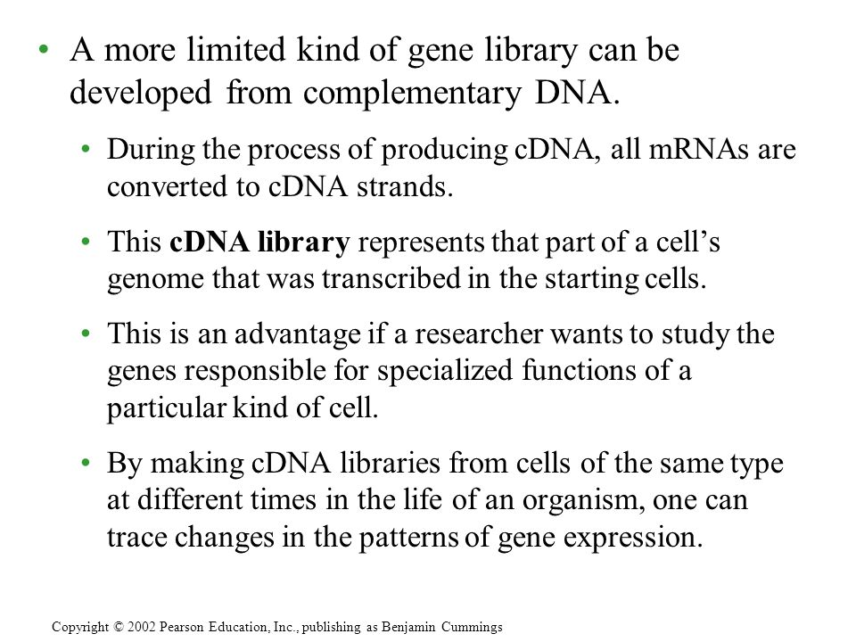 A more limited kind of gene library can be developed from complementary DNA. During the process of producing cDNA, all mRNAs are converted to cDNA str