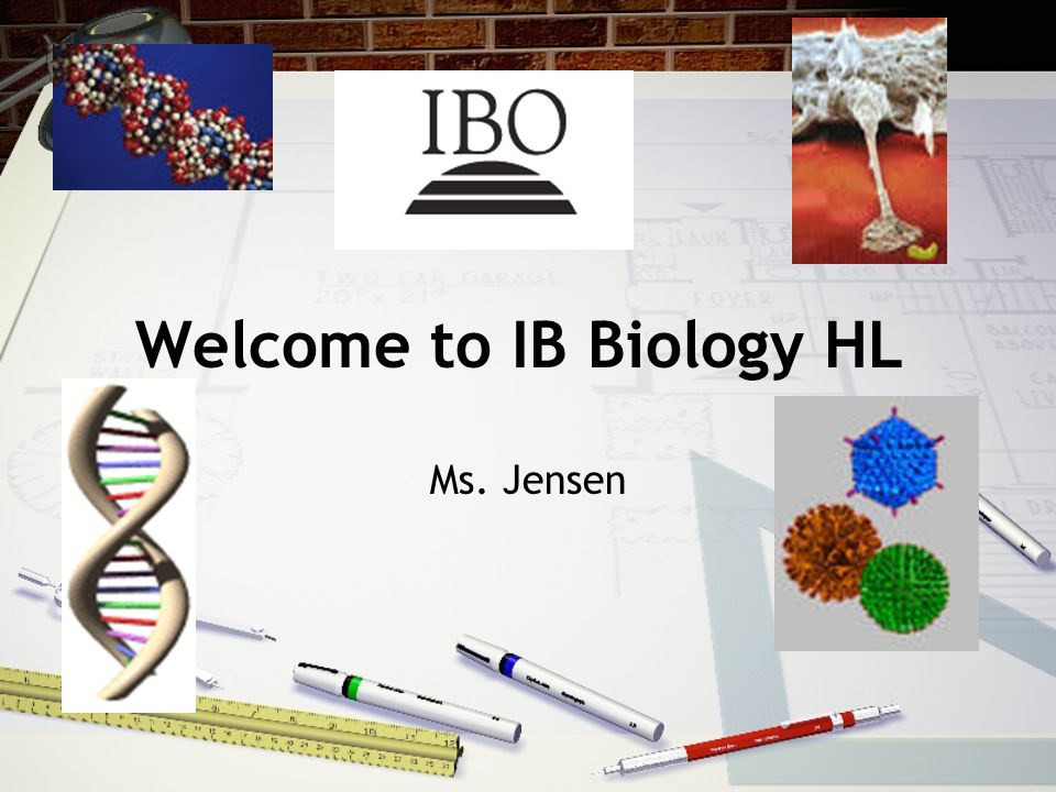 WELCOME TO THE FIRST YEAR OF IB BIOLOGY HIGHER LEVEL! Two year course IB exam – May of senior year