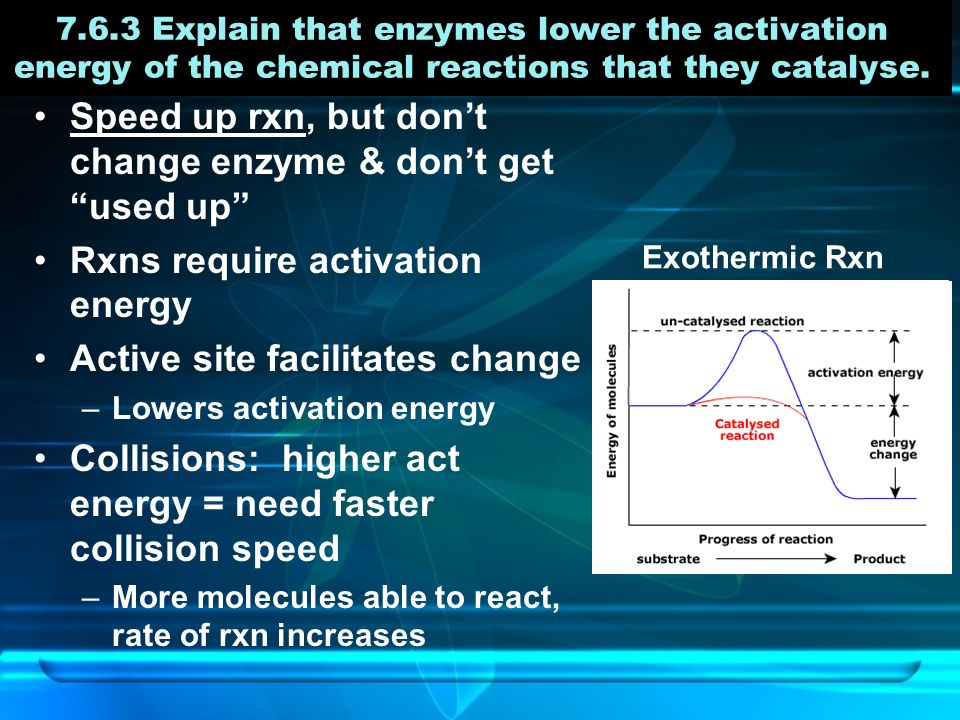 7.6.3 Explain that enzymes lower the activation energy of the chemical reactions that they catalyse.