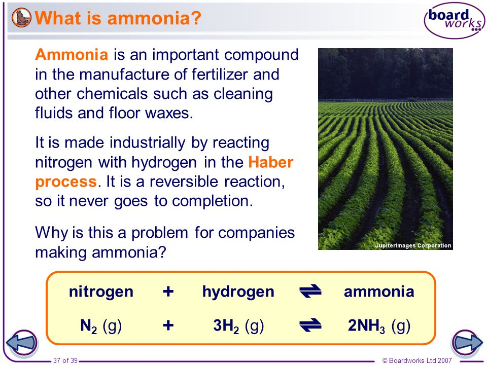 37 of 39© Boardworks Ltd 2007 What is ammonia? It is made industrially by reacting nitrogen with hydrogen in the Haber process. It is a reversible rea