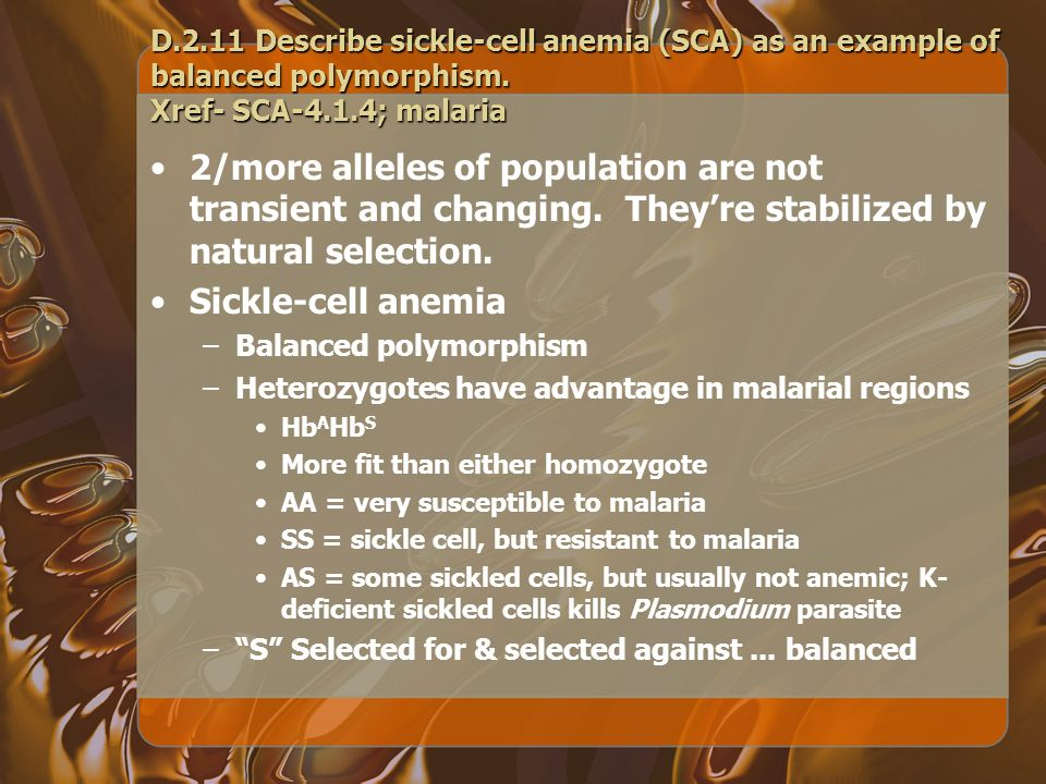 D.2.11Describe sickle-cell anemia (SCA) as an example of balanced polymorphism. Xref- SCA-4.1.4; malaria 2/more alleles of population are not transien