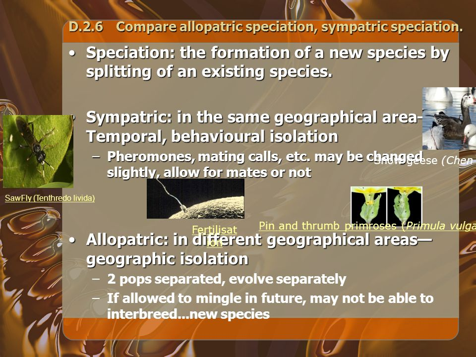 D.2.6Compare allopatric speciation, sympatric speciation. Speciation: the formation of a new species by splitting of an existing species.Speciation: t