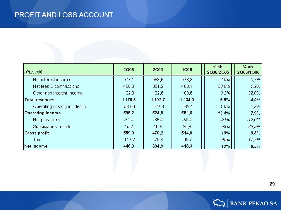 PROFIT AND LOSS ACCOUNT 29