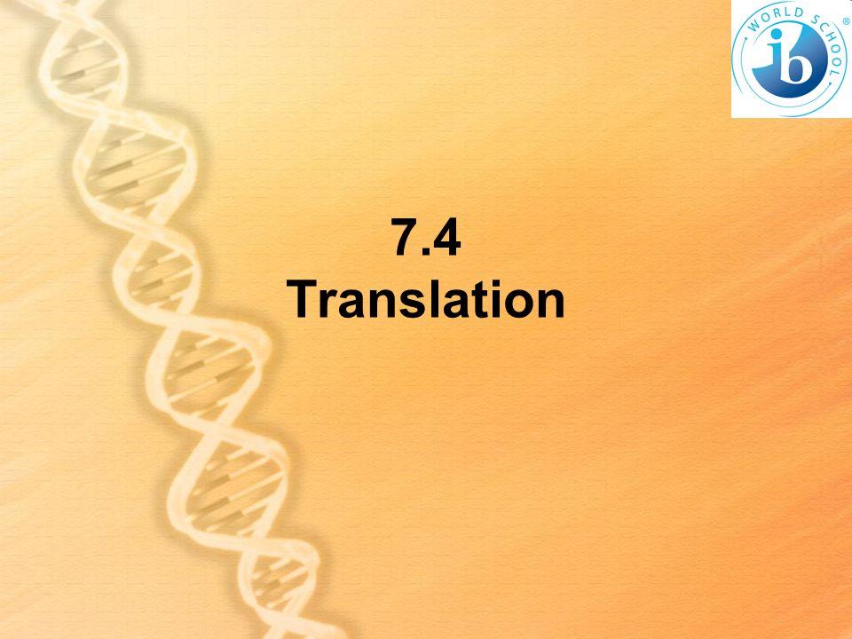 7.4 Translation