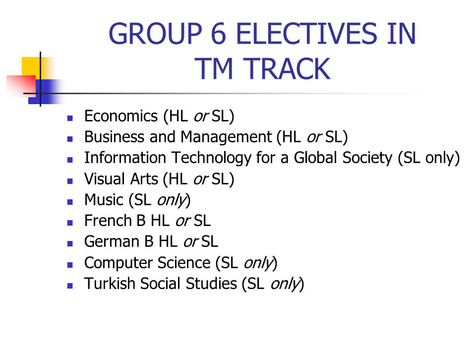 GROUP 6 ELECTIVES IN TM TRACK Economics (HL or SL) Business and Management (HL or SL) Information Technology for a Global Society (SL only) Visual Art