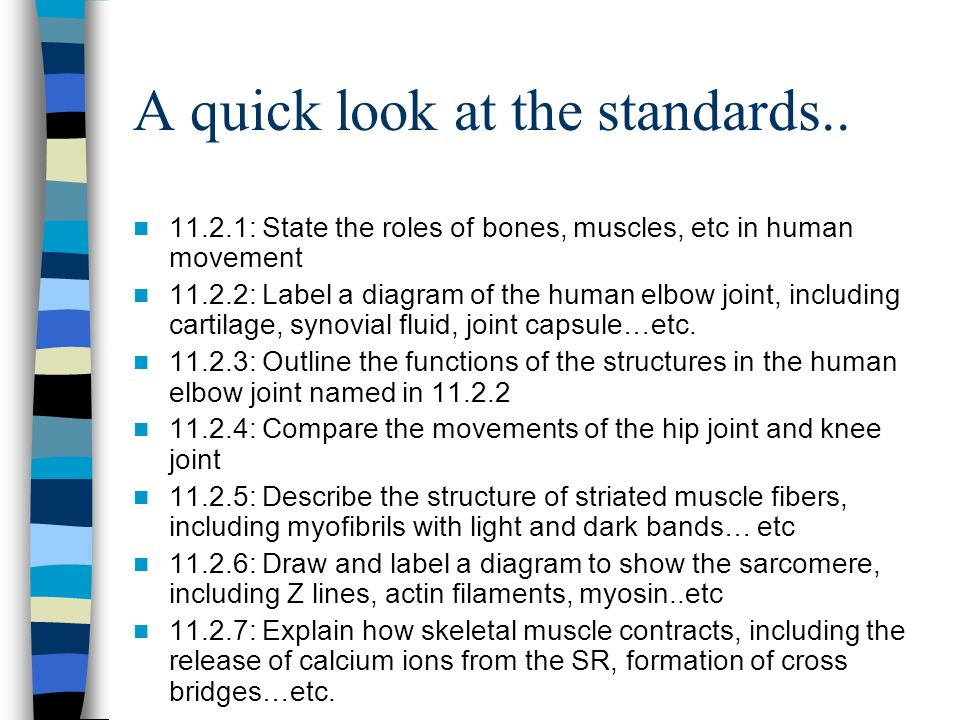 A quick look at the standards.. 11.2.1: State the roles of bones, muscles, etc in human movement 11.2.2: Label a diagram of the human elbow joint, inc