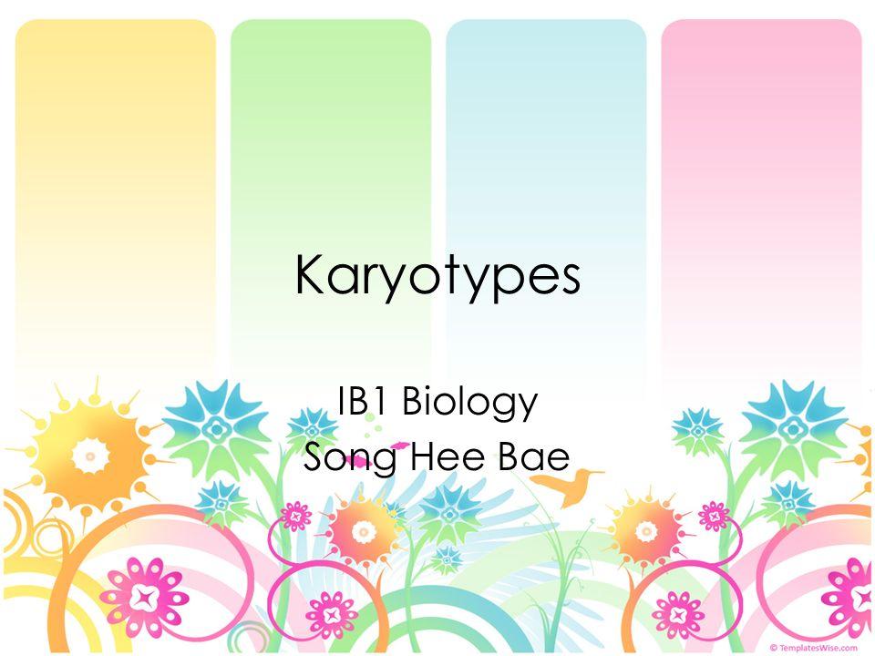 Karyotypes IB1 Biology Song Hee Bae