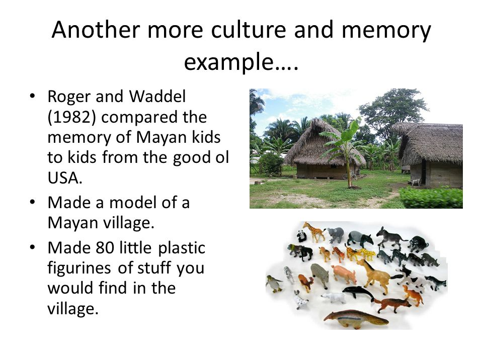 Another more culture and memory example…. Roger and Waddel (1982) compared the memory of Mayan kids to kids from the good ol USA. Made a model of a Ma