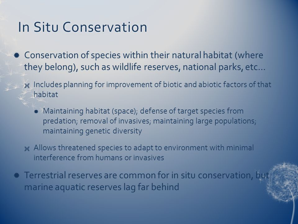 In Situ ConservationIn Situ Conservation Conservation of species within their natural habitat (where they belong), such as wildlife reserves, national