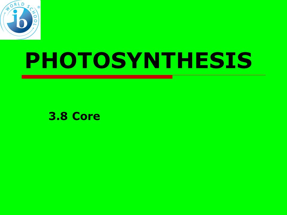 PHOTOSYNTHESIS 3.8 Core