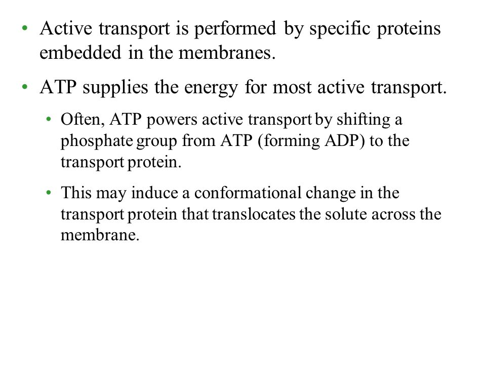 Active transport is performed by specific proteins embedded in the membranes. ATP supplies the energy for most active transport. Often, ATP powers act